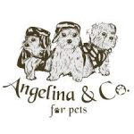 Angelina & Co For Pets